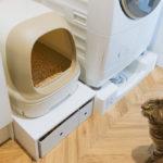 【DIY】猫用トイレの下に収納スペースを自作しました