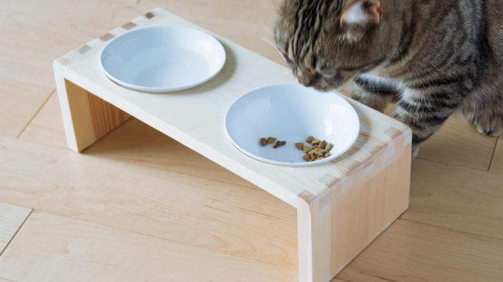 【保護猫迎え入れ】譲渡前に準備したもの(フード・食器編)