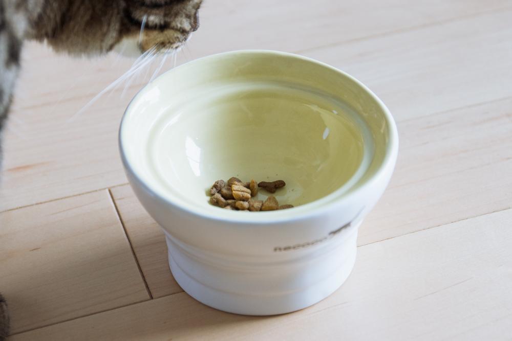 necoco 脚付き陶器食器