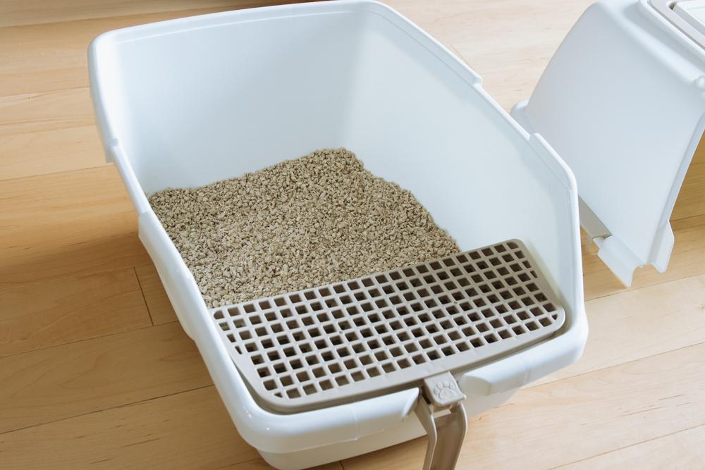 猫用トイレに入った猫砂